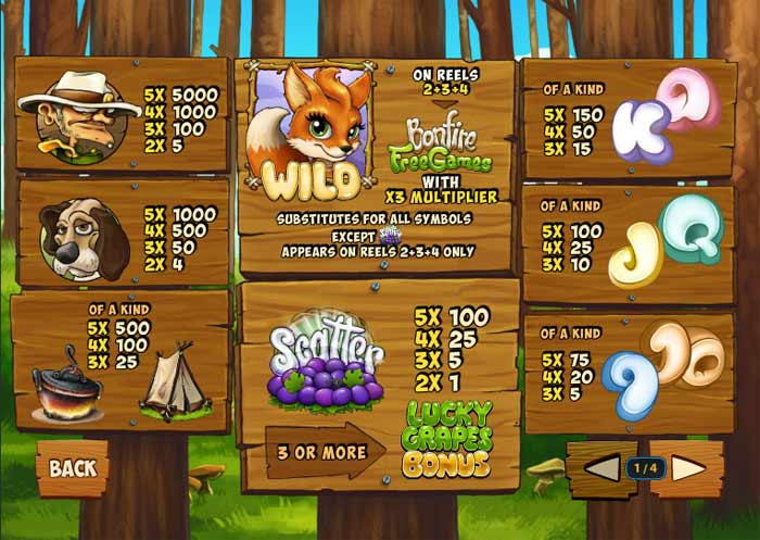 foxy fortunes video slot